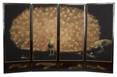 19-peacock-screen2