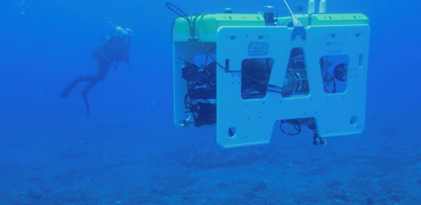 University of Southampton coral reef mapping