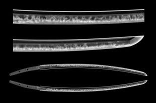 sword tumi