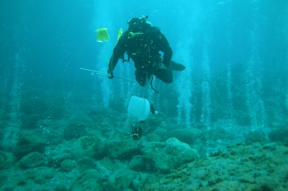 Fig 3Diver studying ocean acidification at CO2 vents, photo by G Caramana