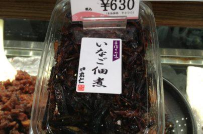 grasshopper tsukudani